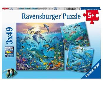 Ocean Life Puzzle 3x49pc Puzzles