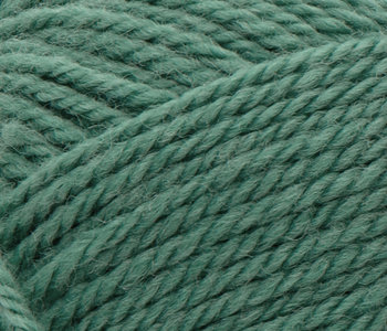 Patons Classic Wool Worsted - Rich Grass/764