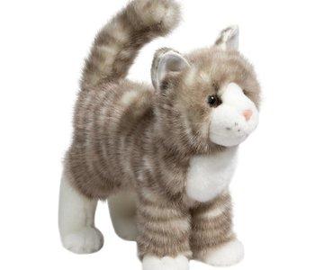 Zipper Grey Tabby Cat