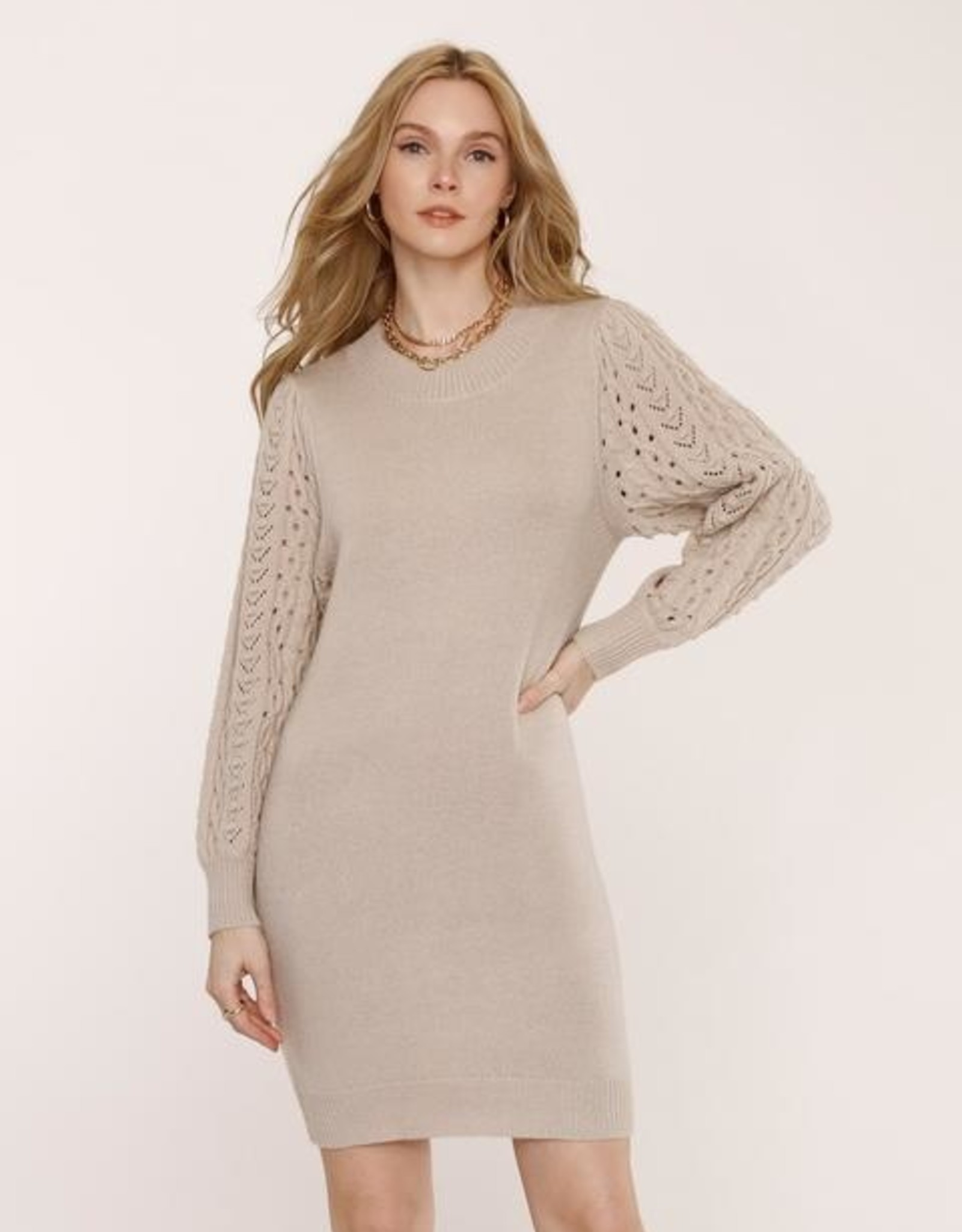 Heartloom Isobel Cable Knit Sleeve Sweater Dress