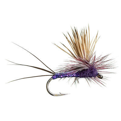 Rocky Mountain Mint | Dry Fly | Purple | #12, #14
