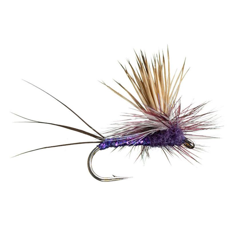 Rocky Mountain Mint   Dry Fly   Purple   #12, #14