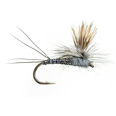 Rocky Mountain Mint | Dry Fly | Adams | #12, #14, #16, #18