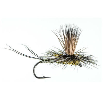 Rocky Mountain Mint | Dry Fly | Olive | #12, #14, #16