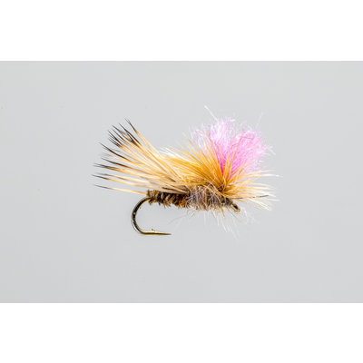 Yellowstone Fly Goods Blooms Caddis   Dry Fly   Tan   #12