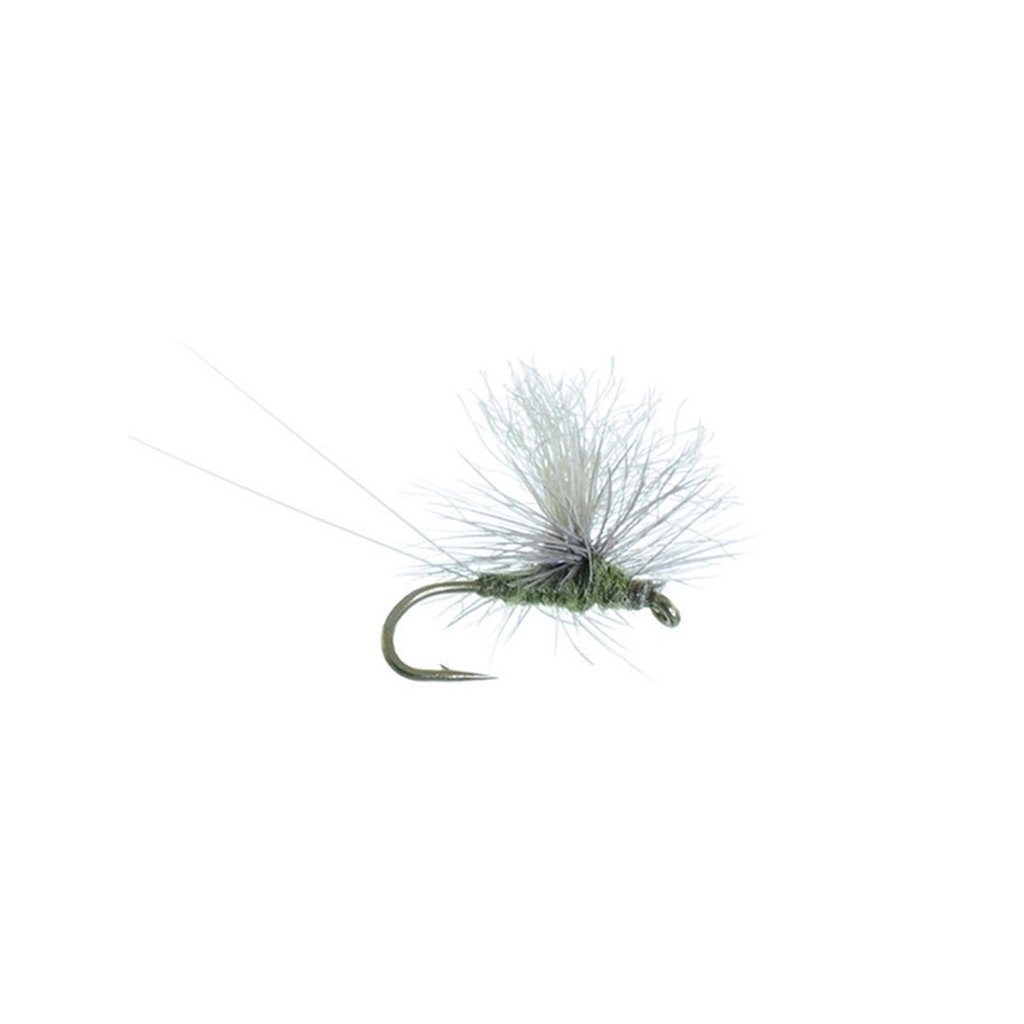 Umpqua Feather Merchants Bear's High Vis Blue Winged Olive