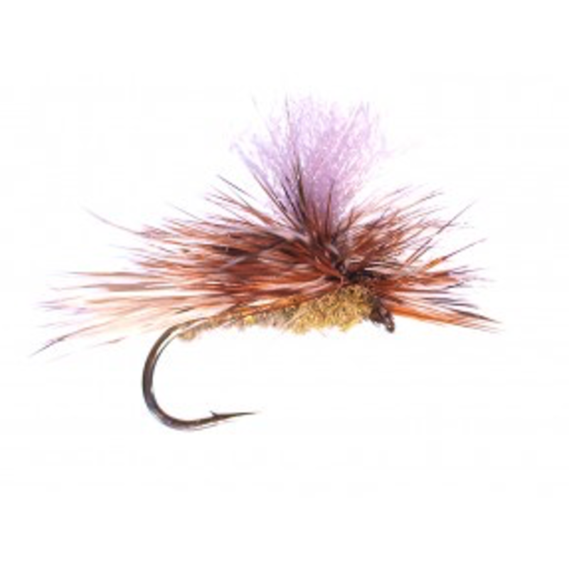 Yellowstone Fly Goods Bloom's Caddis   Dry Fly   Light Olive   #12