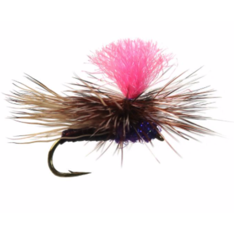Yellowstone Fly Goods Blooms Caddis | Dry Fly | UV Purple | #16