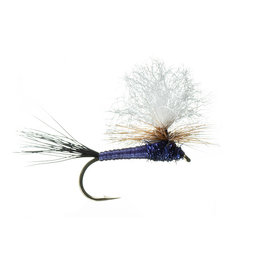 Purple Craze | Dry Fly | #10, #12, #14, #16, #18