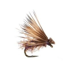 Yellowstone Fly Goods Ninch's Iceberg Caddis | Dry Fly | UV Purple | #16