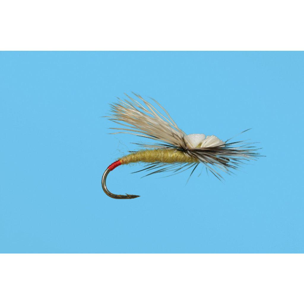 Solitude Fly Company Head Light Yellow Sallie | Dry Fly | #14