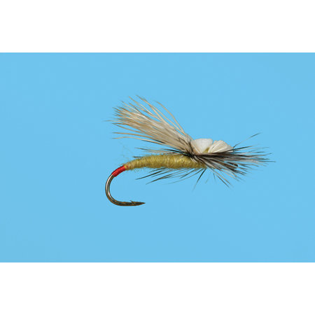 Solitude Fly Company Head Light Yellow Sallie   Dry Fly   #14