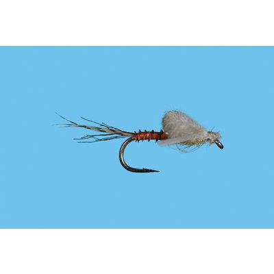Solitude Fly Company Harrop's Captive Dun PMD | Nymph | #20