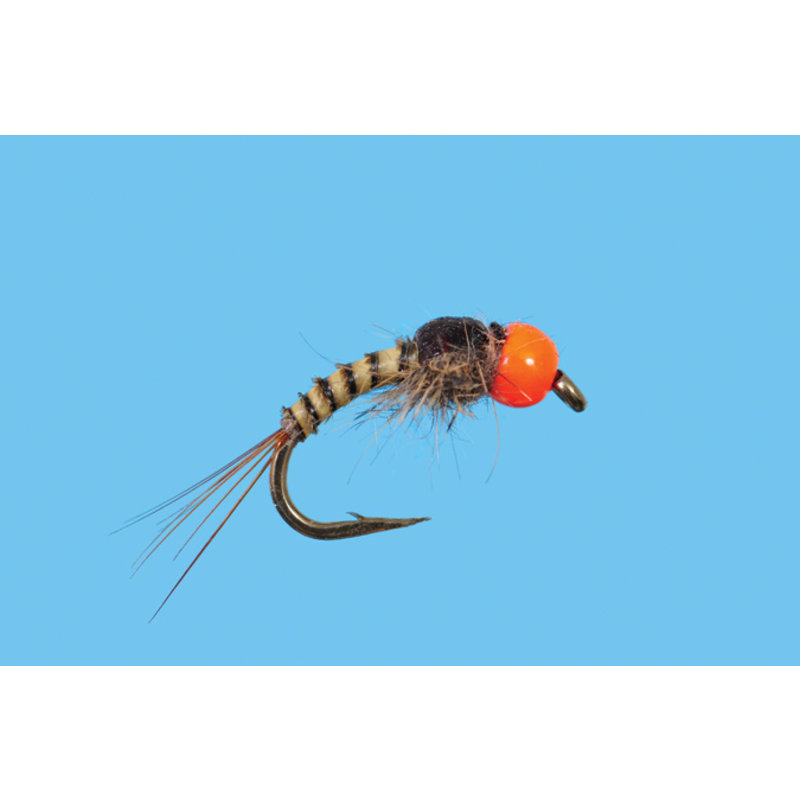 Solitude Fly Company Tungsten Sunkist   Nymph   #18