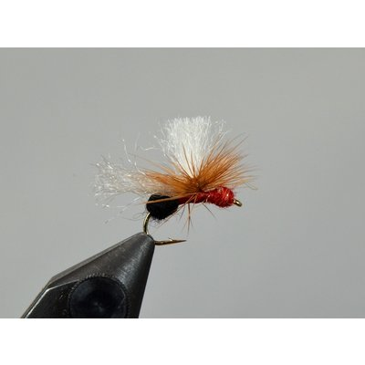 Yellowstone Fly Goods Bloom's Stealth Ant Red & Black | Dry Fly | #16