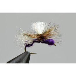 Yellowstone Fly Goods Bloom's Stealth Ant Purple | Dry Fly | #14, #16