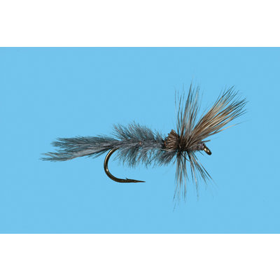 Solitude Fly Company Quigley Cripple Gray Drake | Dry Fly | #10