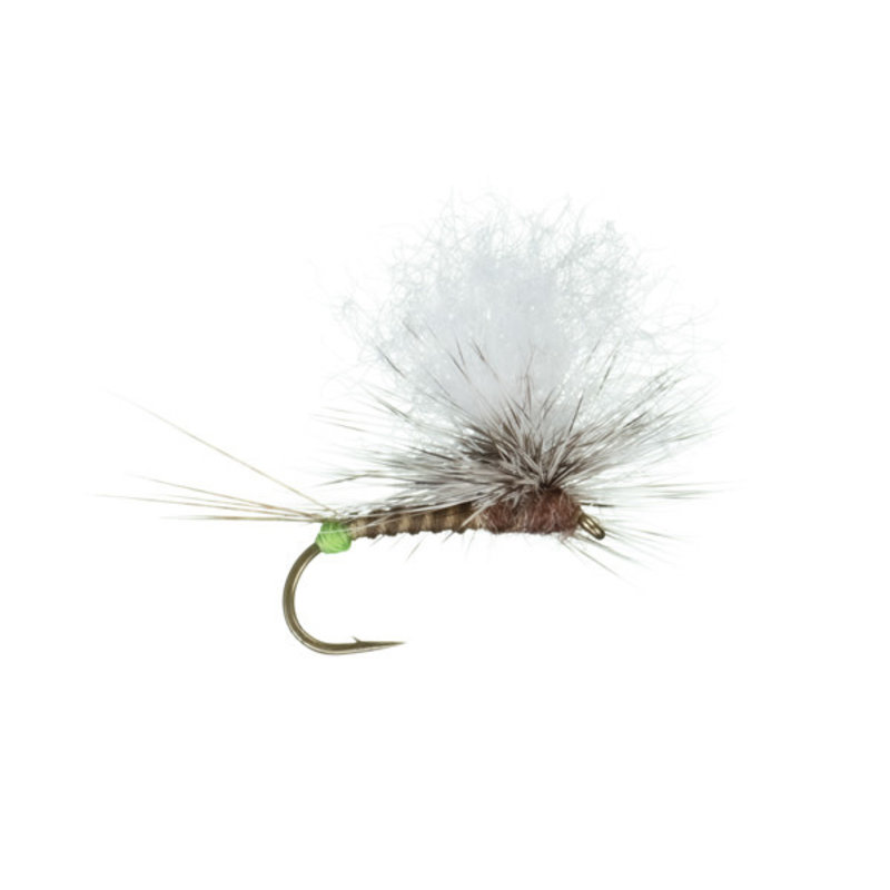 Hot Spot Para Wulff | Dry Fly | Brown, Purple,PMD, BWO | #12, #14, #16, #18