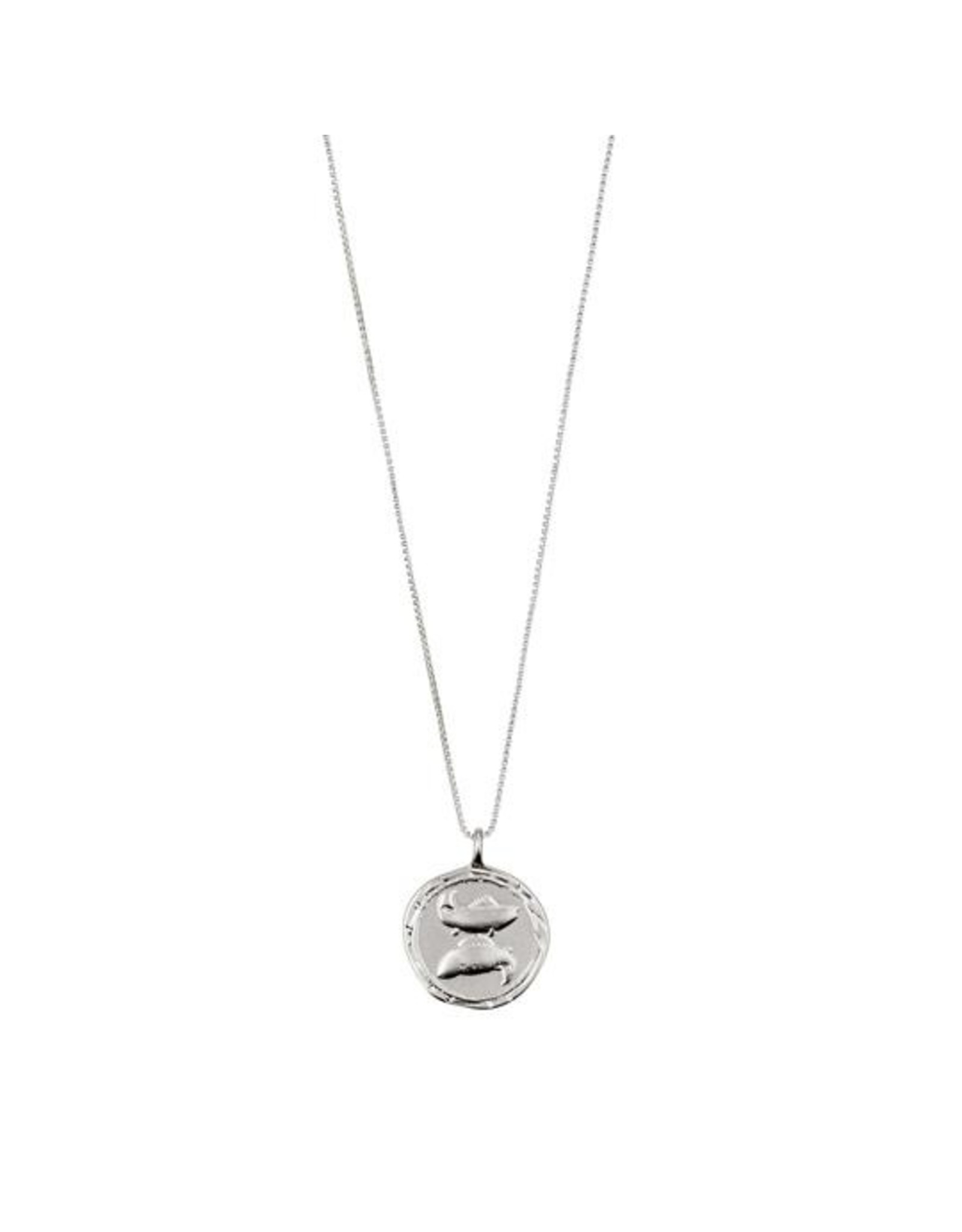 Pilgrim - Pisces Necklace/Silver Crystal