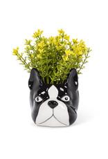 ATT - Dog Head Planter