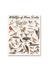 Midnight Oil Print - Wildlife of Nova Scotia: Birds Print