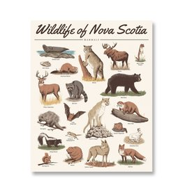 Midnight Oil Print - Wildlife of Nova Scotia: Mammals Print