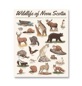 Midnight Oil Print - Wildlife of Nova Scotia: Mammals Print