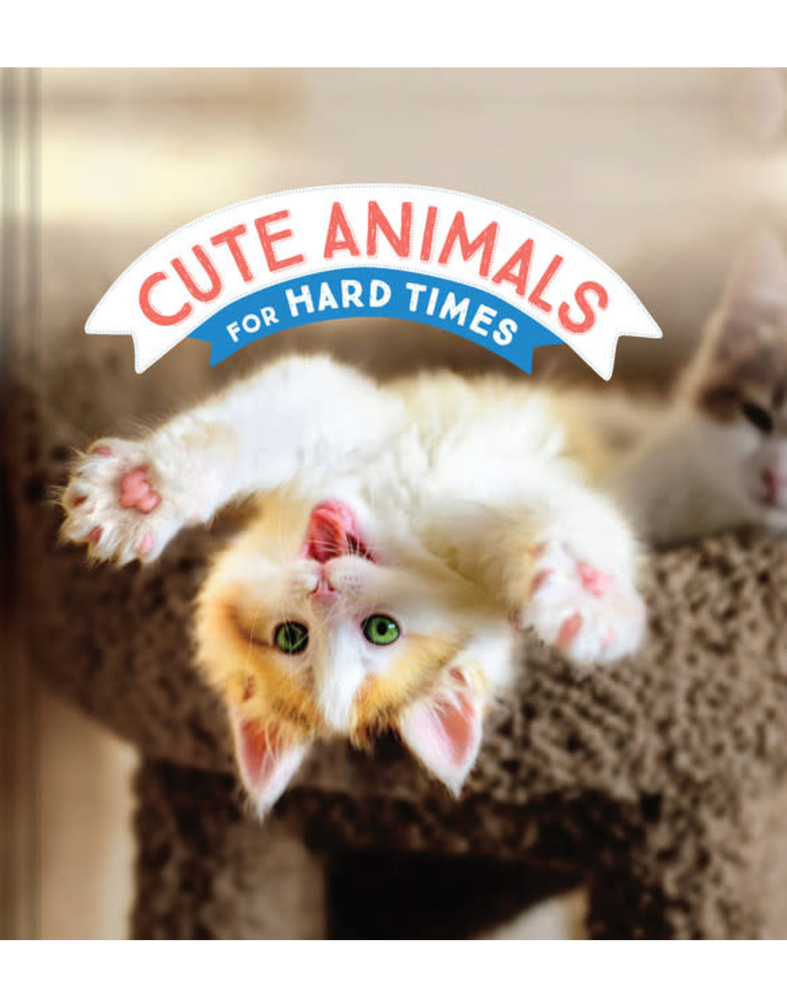 RST - Cute Animals for Hard Times