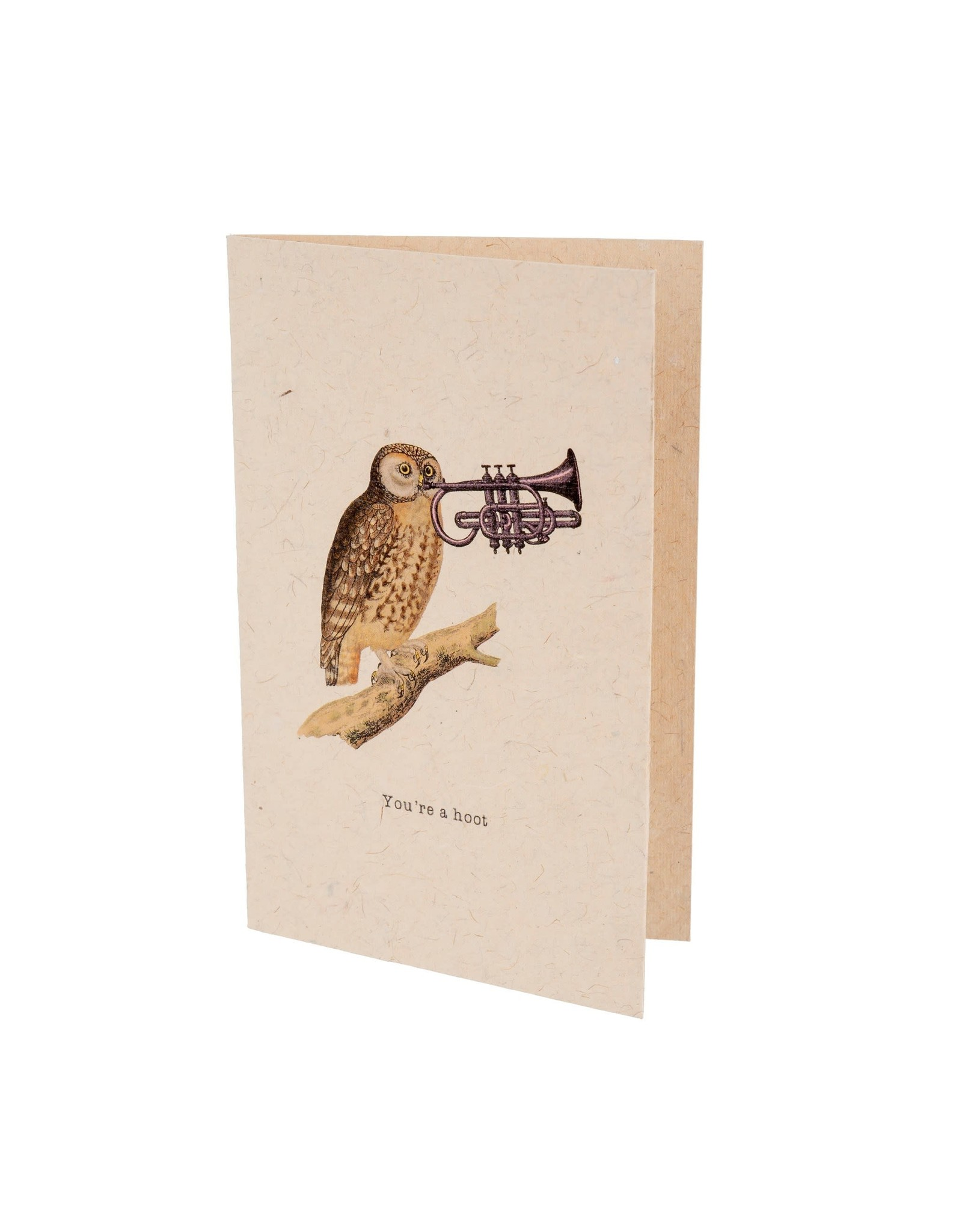 IBA - You're a Hoot Card