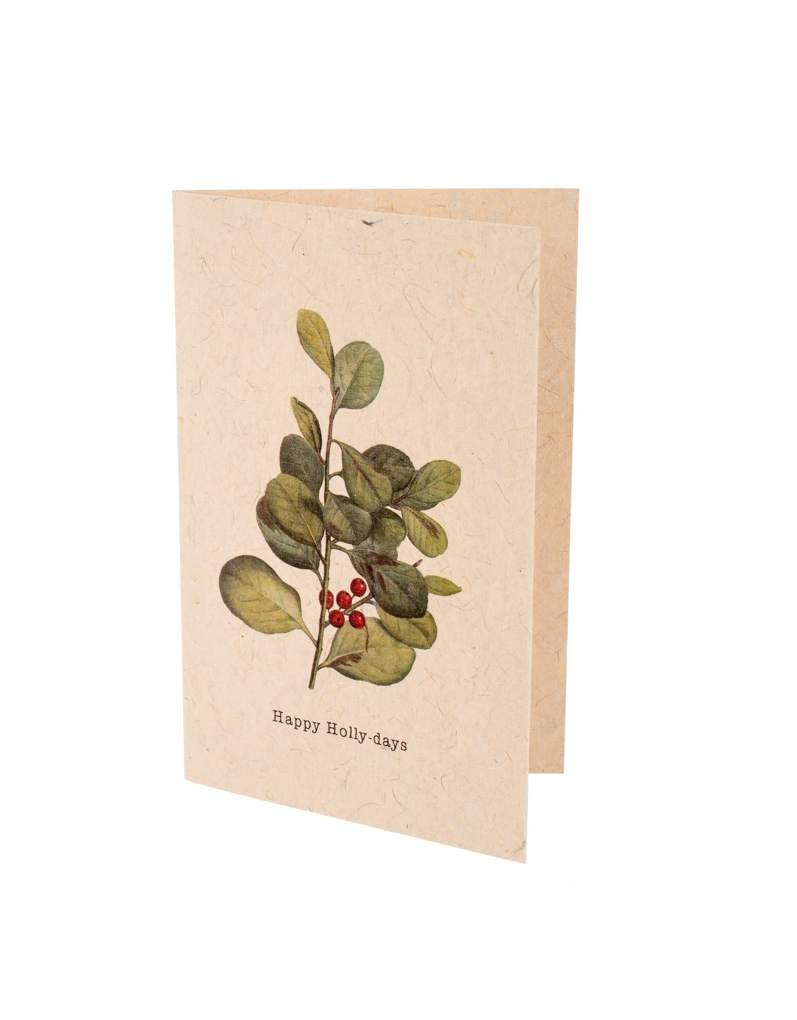 IBA - Happy Holly-Days Card