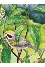 NLE - Golden-Winged Warbler Mini Puzzle / 100pcs