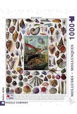 NLE - Puzzle Mollusks / 1000pcs