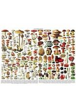NLE - Puzzle Mushrooms / 1000pcs