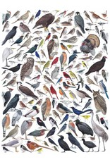 NLE - Puzzle Birds Of Eastern/Central North America / 1000pcs