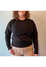 Colorful Standard - Pretty Classic Cotton Sweatshirt Crew