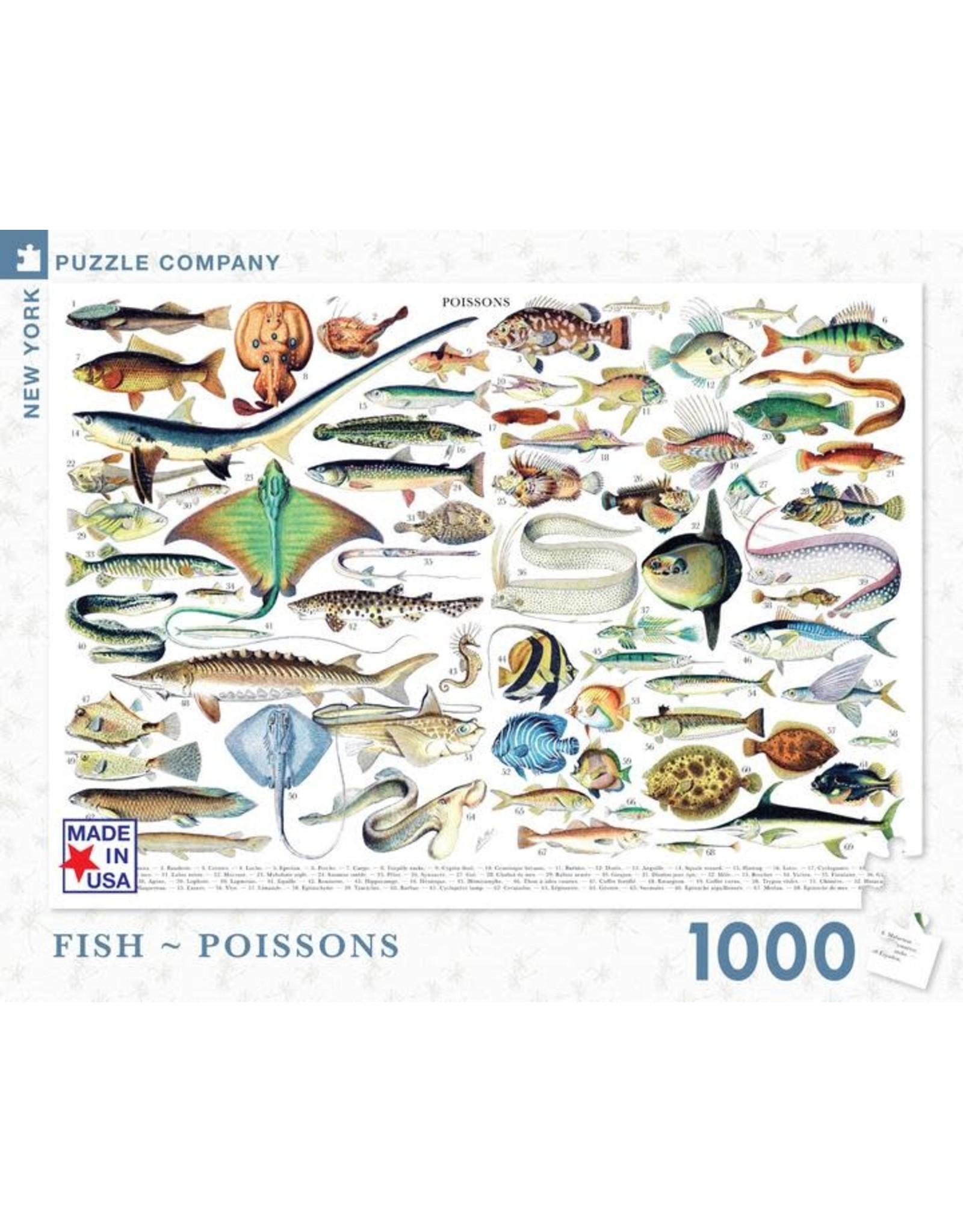 NLE - Puzzle Fish  / 1000pcs