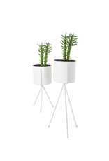 CTG - Plant Pot in Stand/White, 4 x 9.5""