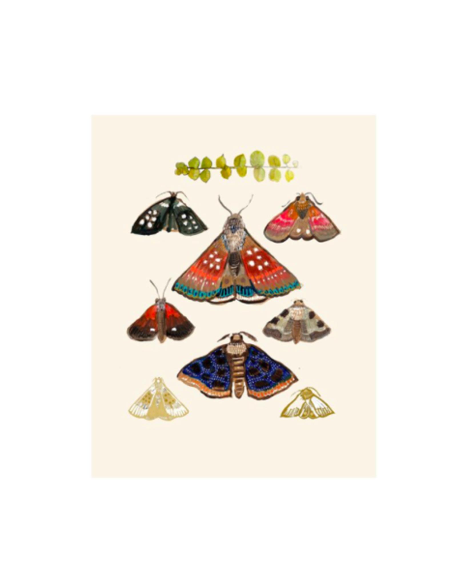 """Briana Corr Scott - Card/Moths, Cream, 4 x 6"""""""