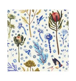 "Briana Corr Scott - Card / Botanical Swallow & Protea, 4 x 6"""