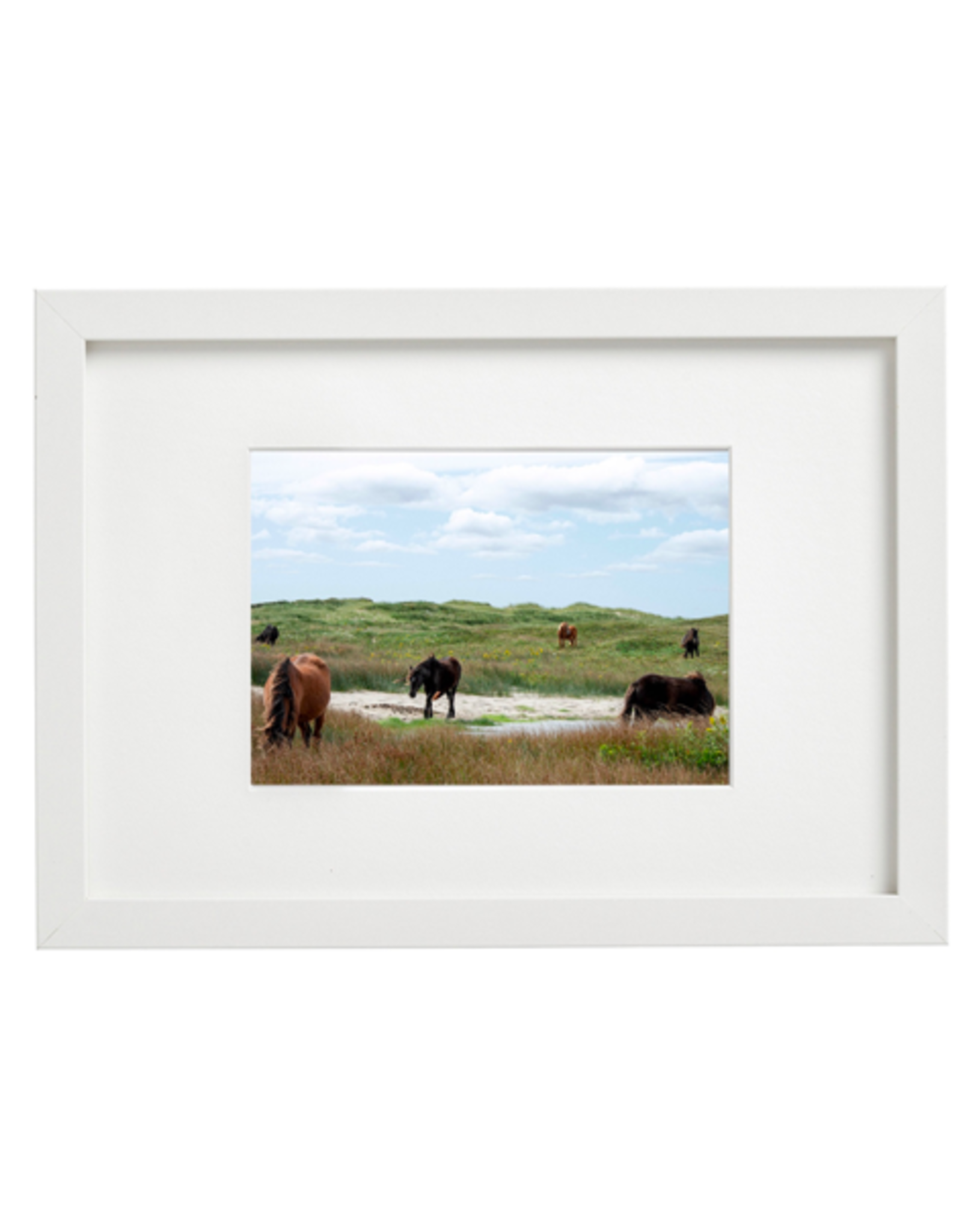 "Aleyah Solomon - Photo Print/Family Gathering Sable Horses 11 x 14"""