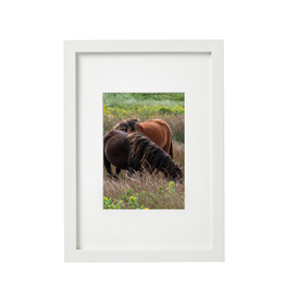 "Aleyah Solomon - Photo Print/Flowy Mane Sable Horses, 11 x 14"""