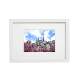 "Aleyah Solomon - Photo Print/Notre Dame, 8 x 10"""
