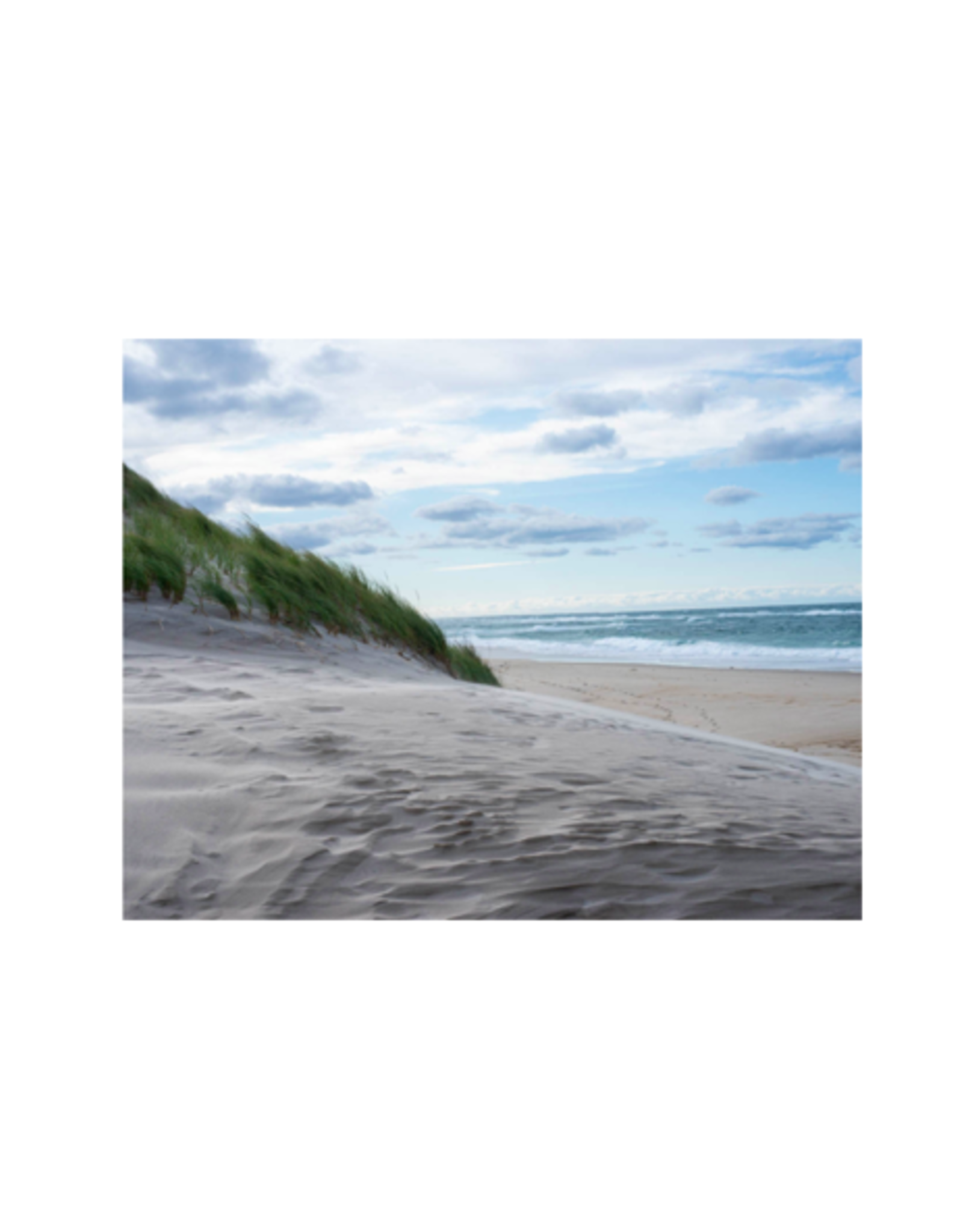 Aleyah Solomon - Photo Print/North Sable Island 8 x 10""