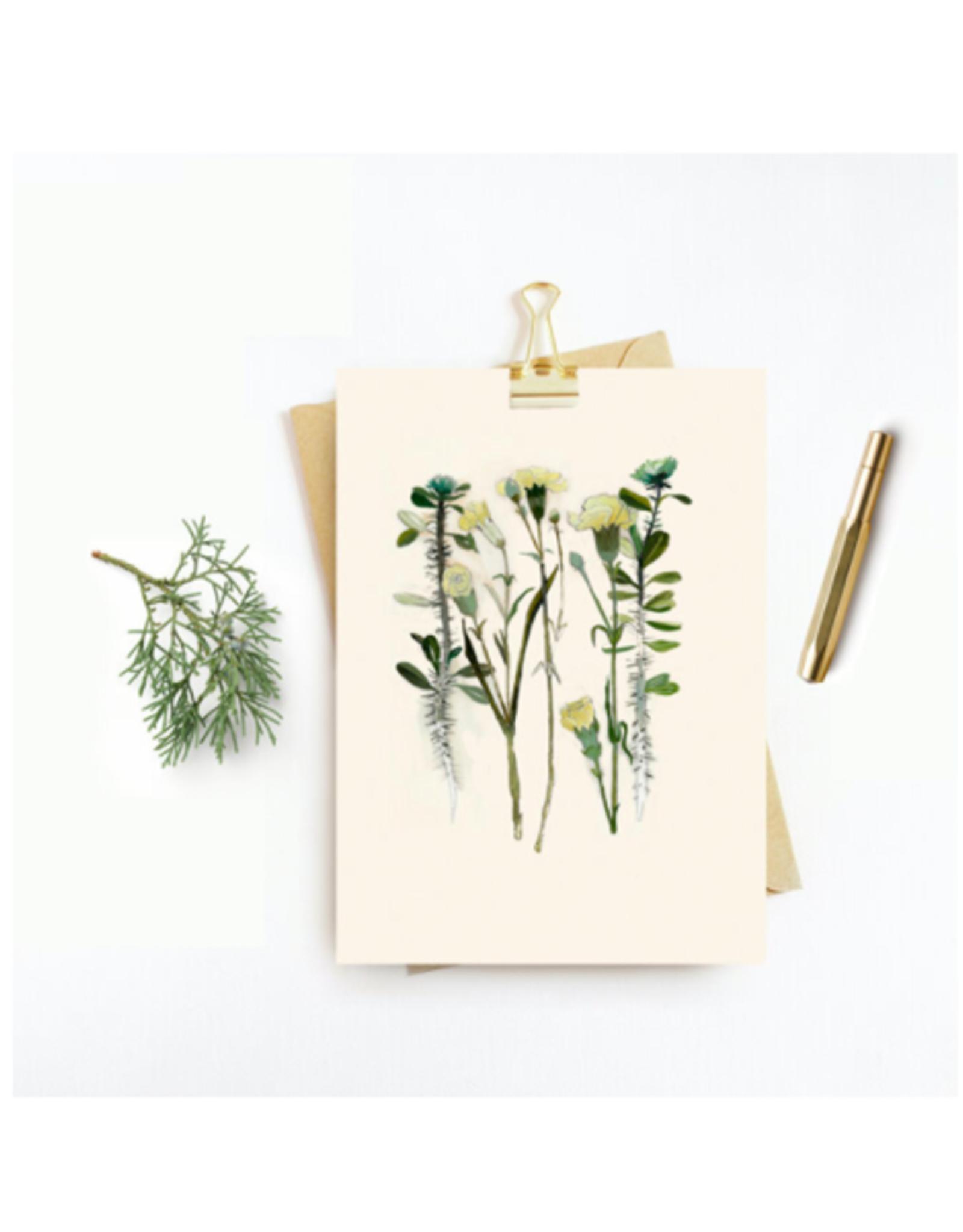 "Briana Corr Scott - Card/Thorny Rose & Carnation, 4 x 6"""