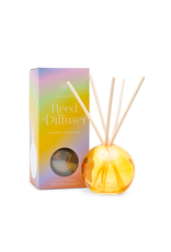 PAX - Diffuser Set/Whiskey & Sequoia, Golden Bubble Glass, 4oz