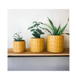 """FRS - Plant Pot/Bumble, 4"""""""