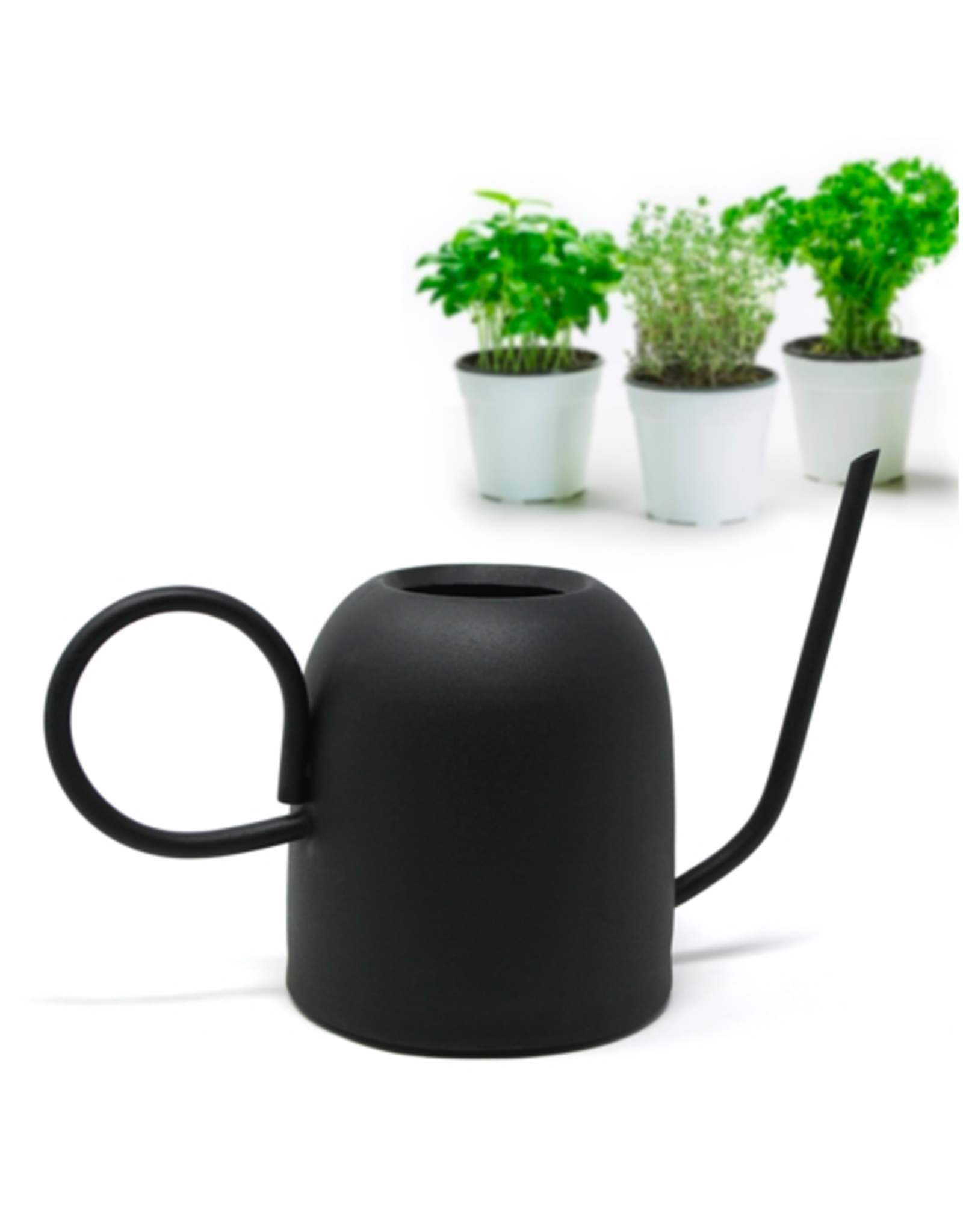 DCO - Watering Can/Chelsea, Black, 1.5L