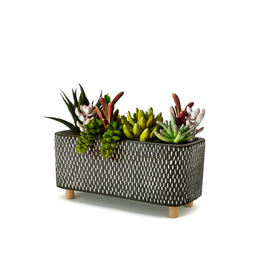 DCO - Footed Plant Pot/Oblong, Black & White, 7''