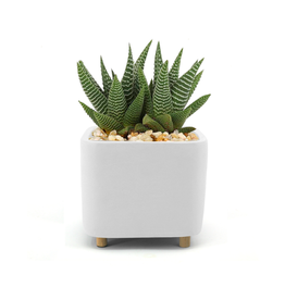 """DCO - Footed Plant Pot / Square, White, 5"""""""
