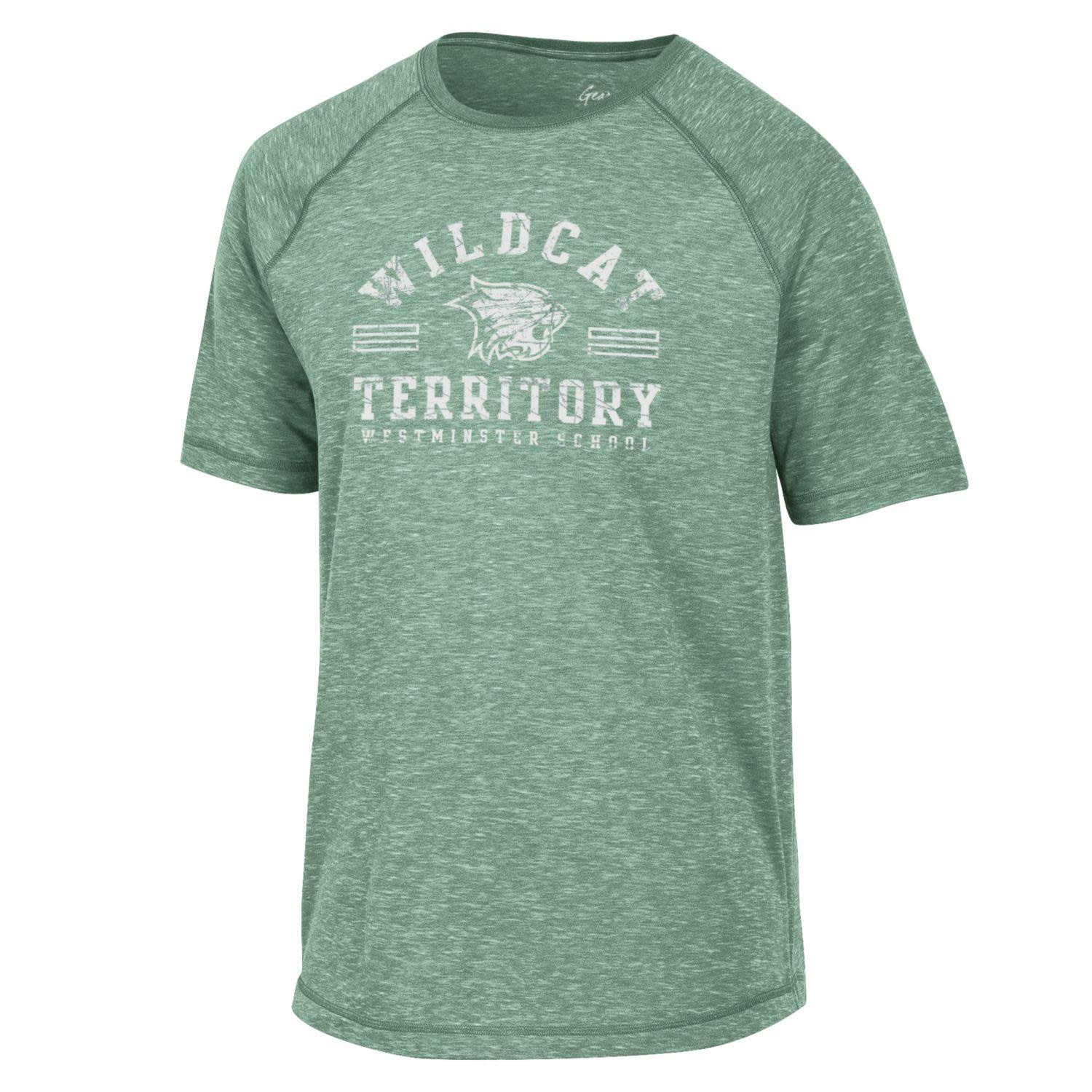 Under Armour T: Fireside Raglan Tee - Nurture Green, Territory